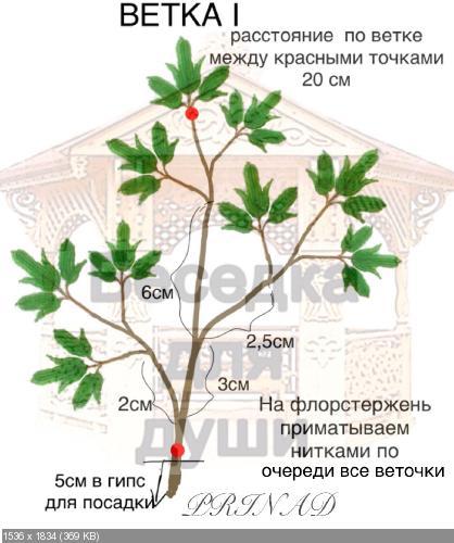 http://i92.fastpic.ru/thumb/2017/0602/52/4810a42ec7cf3abfa706f11b278c0a52.jpeg