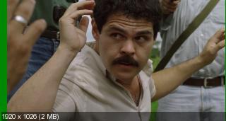 Коротышка / El Chapo [Сезон: 1] (2017) WEB-DL 1080p | NewStudio