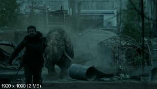 Зверинец / Zoo [Сезон: 3, Эпизоды 1-8 из 13] (2017) WEB-DL 1080p | BaibaKo