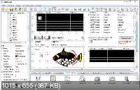 Longtion RadBuilder 3.13.0.440 Portable