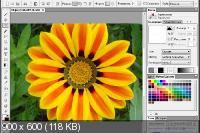 Artweaver Plus 6.0.10.14958 Repack/Portable by elchupacabra