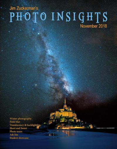 Photo Insights November 2018